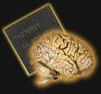 Mengembangkan Pikiran Produktif