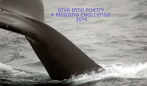 2014 Dive Into Poetry Challenge