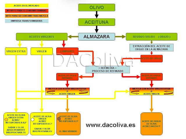 Clasificación del aceite de oliva