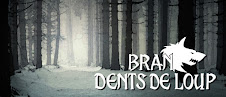 Blog Collection : BRAN DENTS DE LOUP
