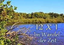 http://wwwchristas-hobbyblog.blogspot.de/2014/01/neues-blog-projekt-im-wandel-der-zeit.html