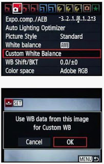 Customize White Balance DSLR Camera 2.jpg