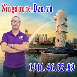 singapore.dzo.vn