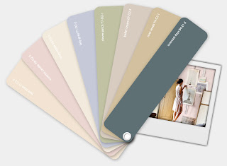 plascon color inspiration design memory