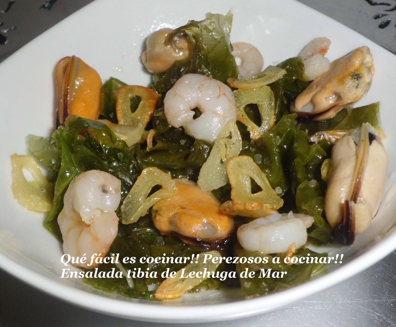 Perezosos a cocinar ensalada tibia de lechuga de mar Cocinar ortigas de mar