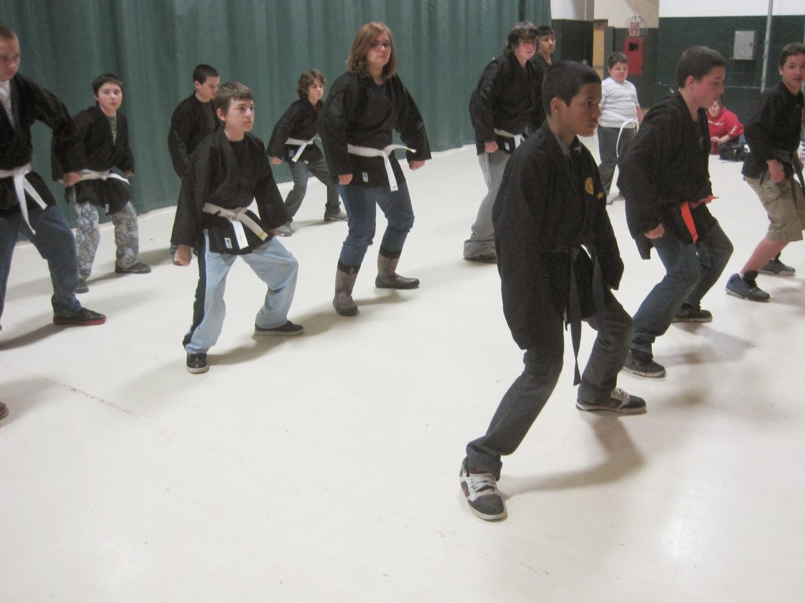 Bushintai Do Programs January 2014