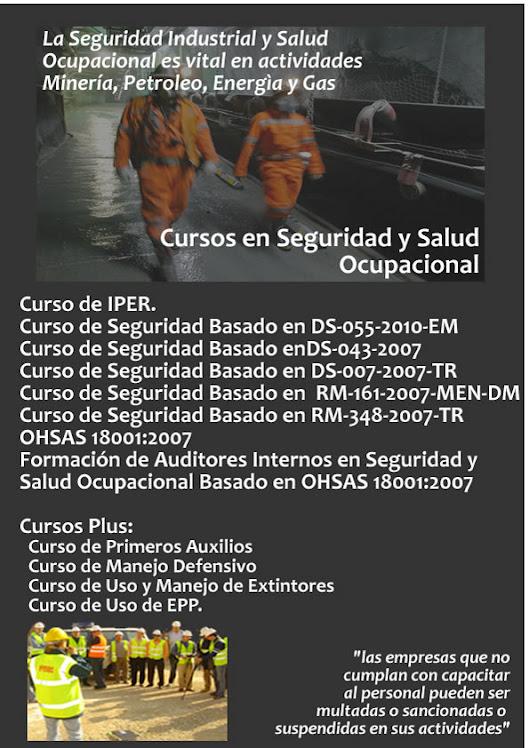 CURSOS EN SEGURIDAD Y SALUD OCUPACIONAL PARA MINERIA; PETROLEO; ENEGIA Y GAS