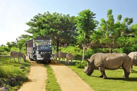 wisata bali Taman Safari Marine Park