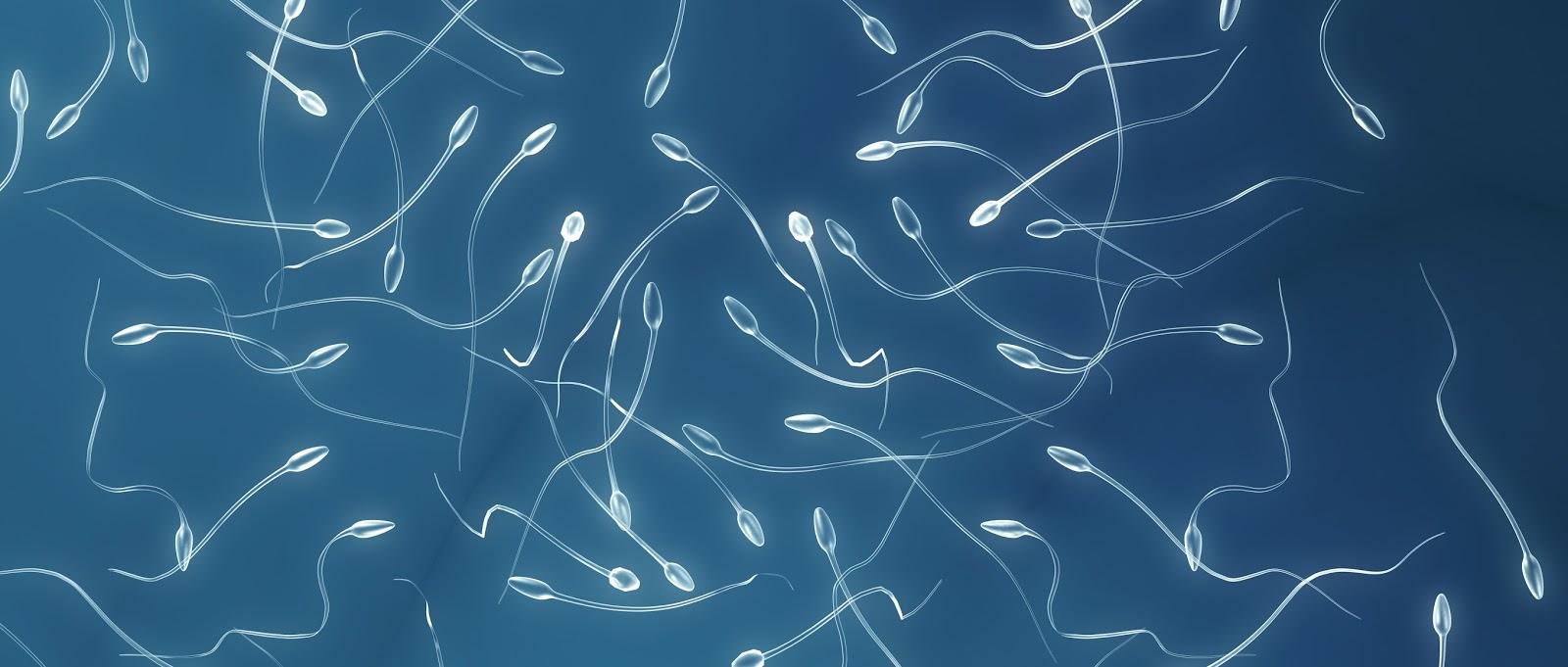 Фото только сперми 20 фотография
