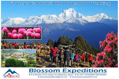 Ghorepani-Poonhill Rhododendron Trek