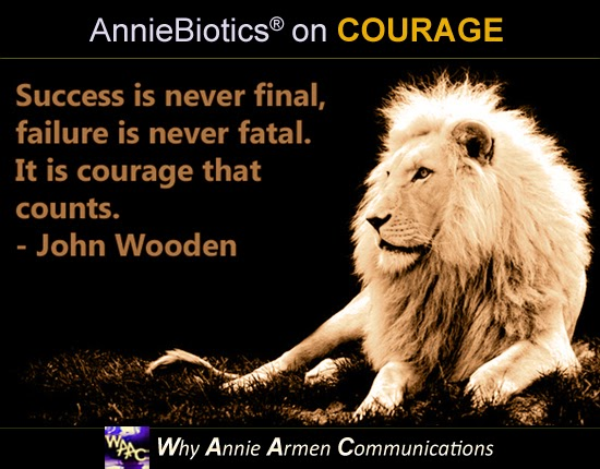 GO FOR IT with Insane Courage! | Consult with Annie Armen at WhyAnnieArmen.com