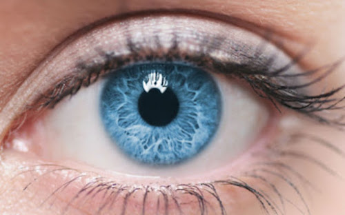 10 fatos interessantes sobre os cílios