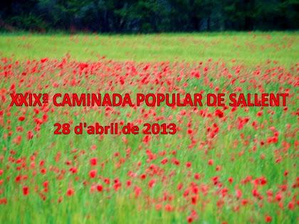 29ª Caminada Popular de Sallent 2013