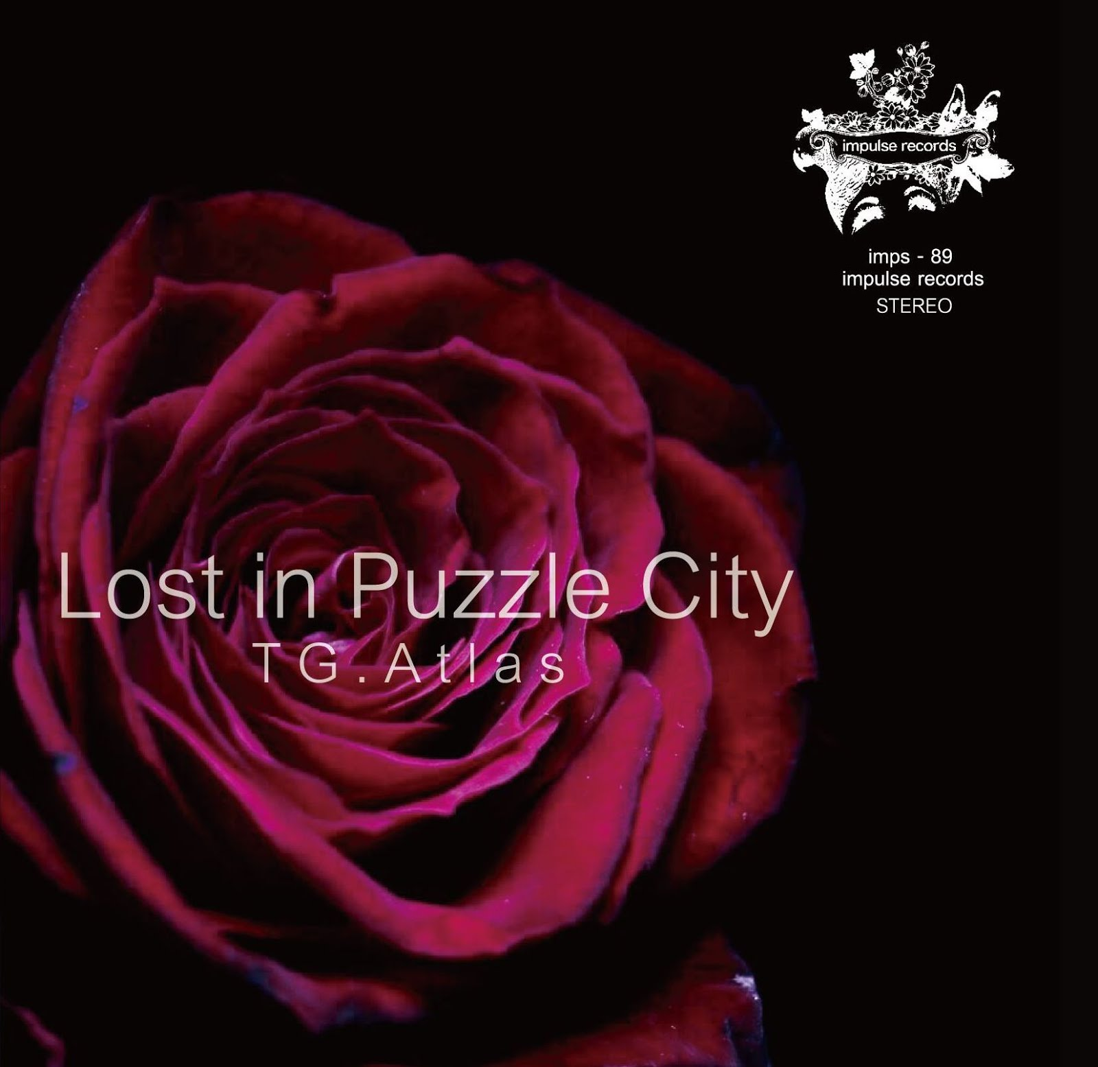 Lost in Puzzle City