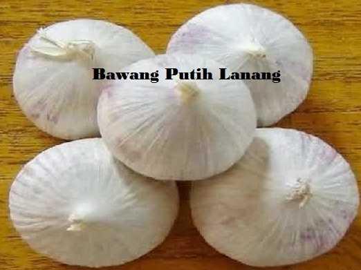 Bawang Putih Untuk Obat Hipertensi (Darah Tinggi)   GURUH ZULFAHMI
