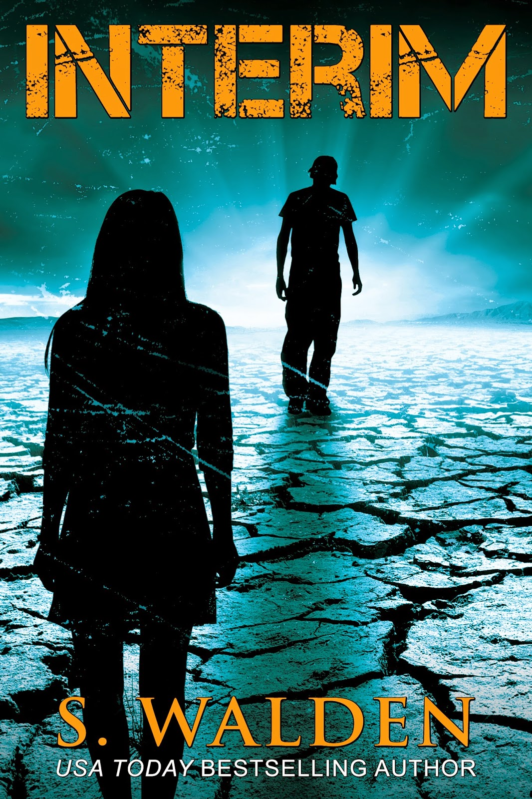 Cover Reveal: Interim by S. Walden