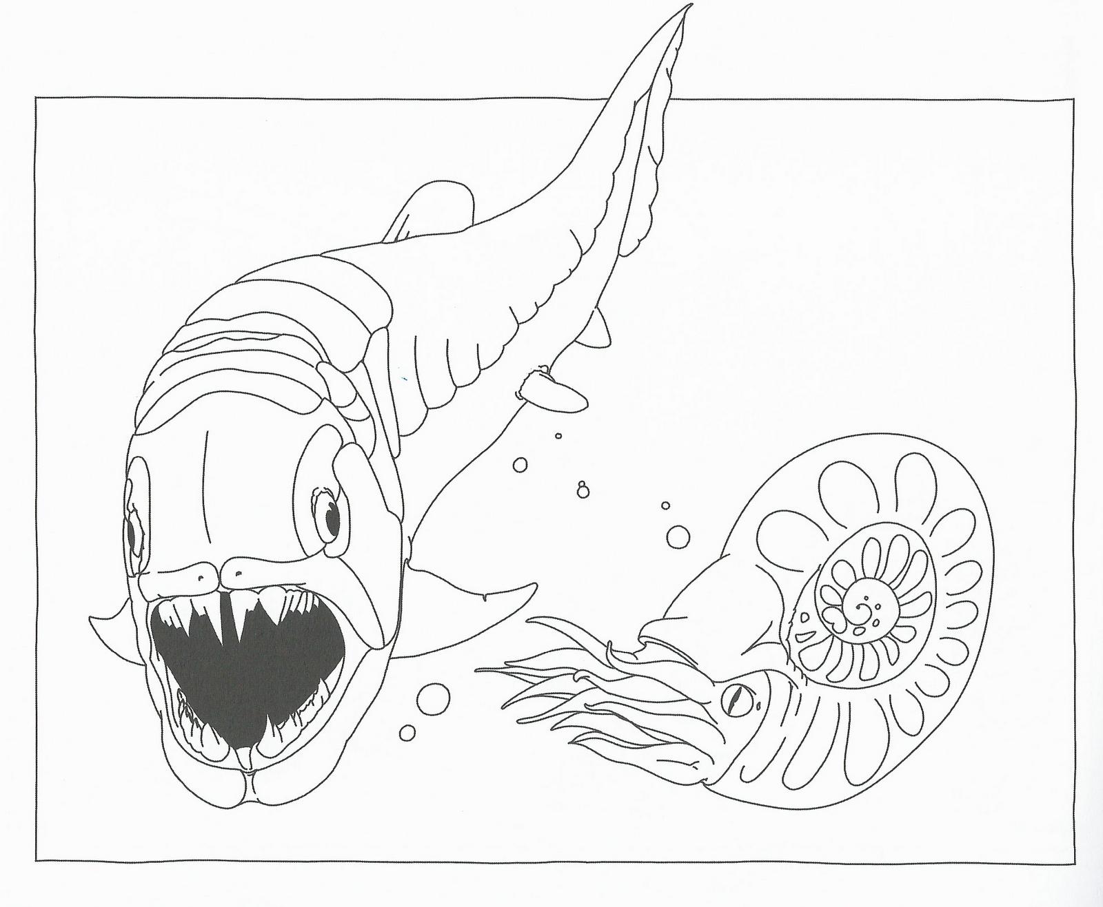 Disegni da colorare disegni da colorare i dinosauri for Disegni marini da colorare