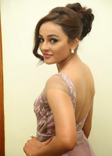 Actress Seerat Kapoor Pictures in Long Dress at Tiger Audio Launch  21