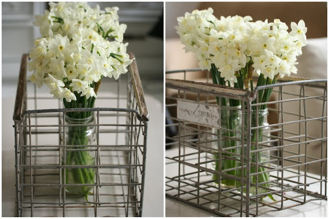 Jonquils in Vintage Wire crate