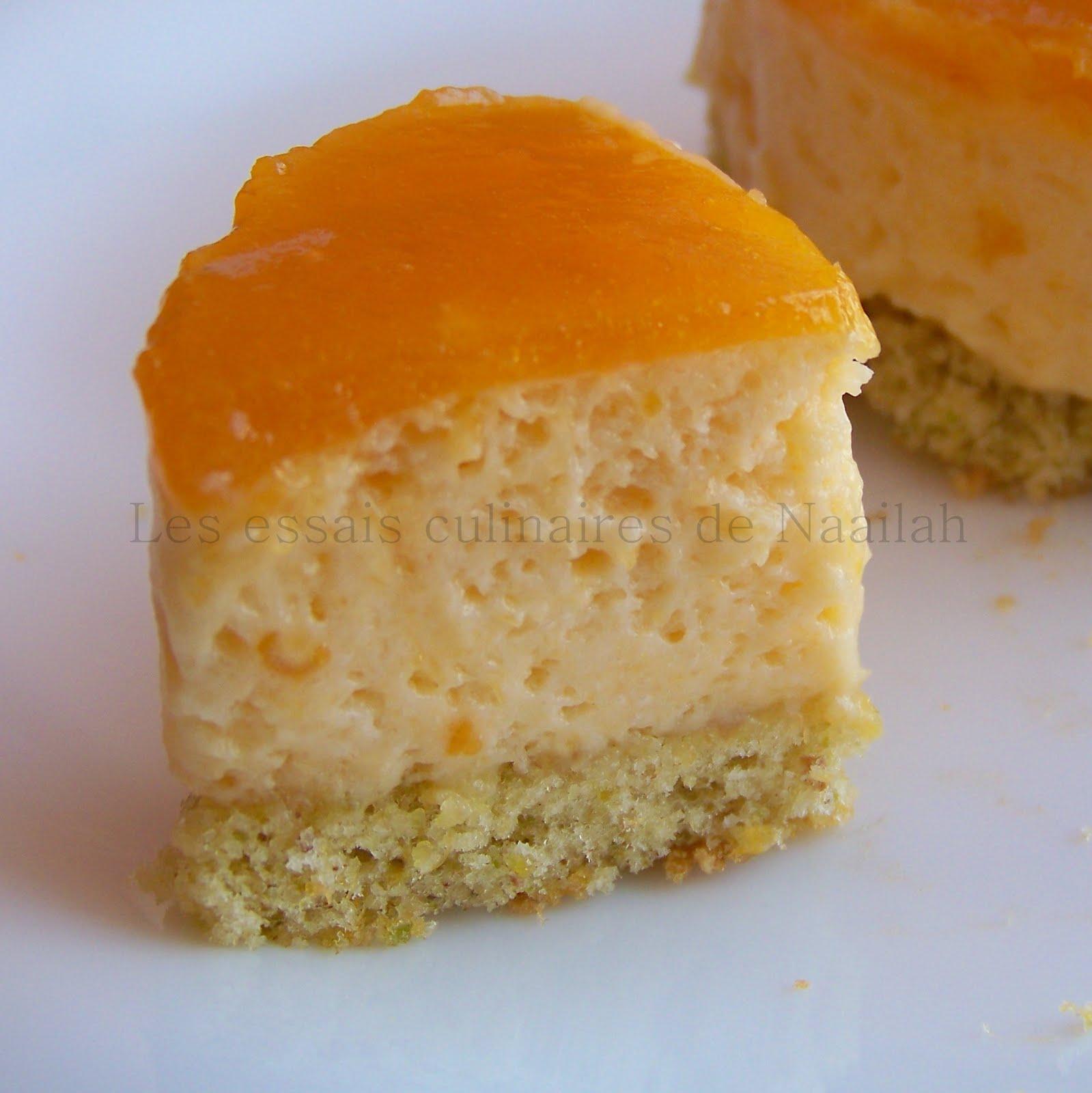 Minis bavarois l 39 abricot avec agar agar blogs de cuisine for Agar agar cuisine