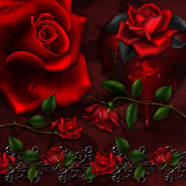 Rosas Vermelhas;