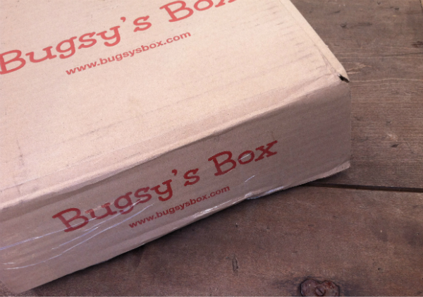 Bugsy's Box - October 2012 Review - Monthly Pet and Dog Subscription Boxes