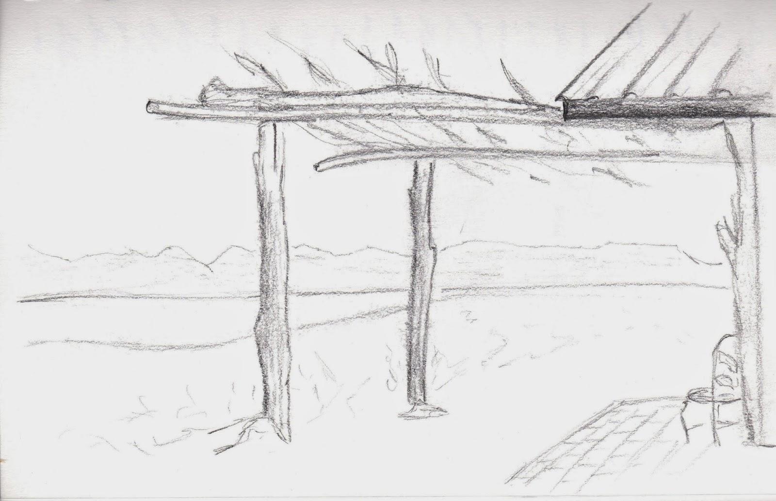 Sketch a State: Nevada