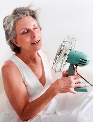 remedios caseros para sofocos menopausia