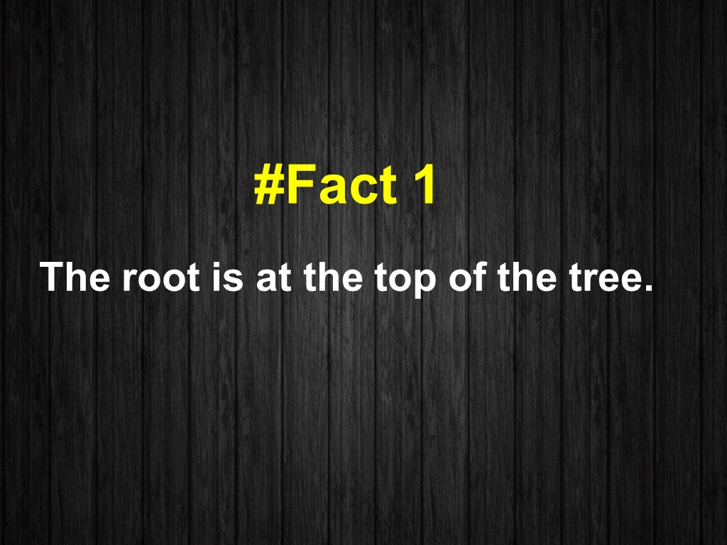 The root is at the top of the tree.