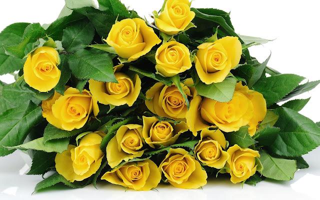 Wallpaper met een bos gele rozen