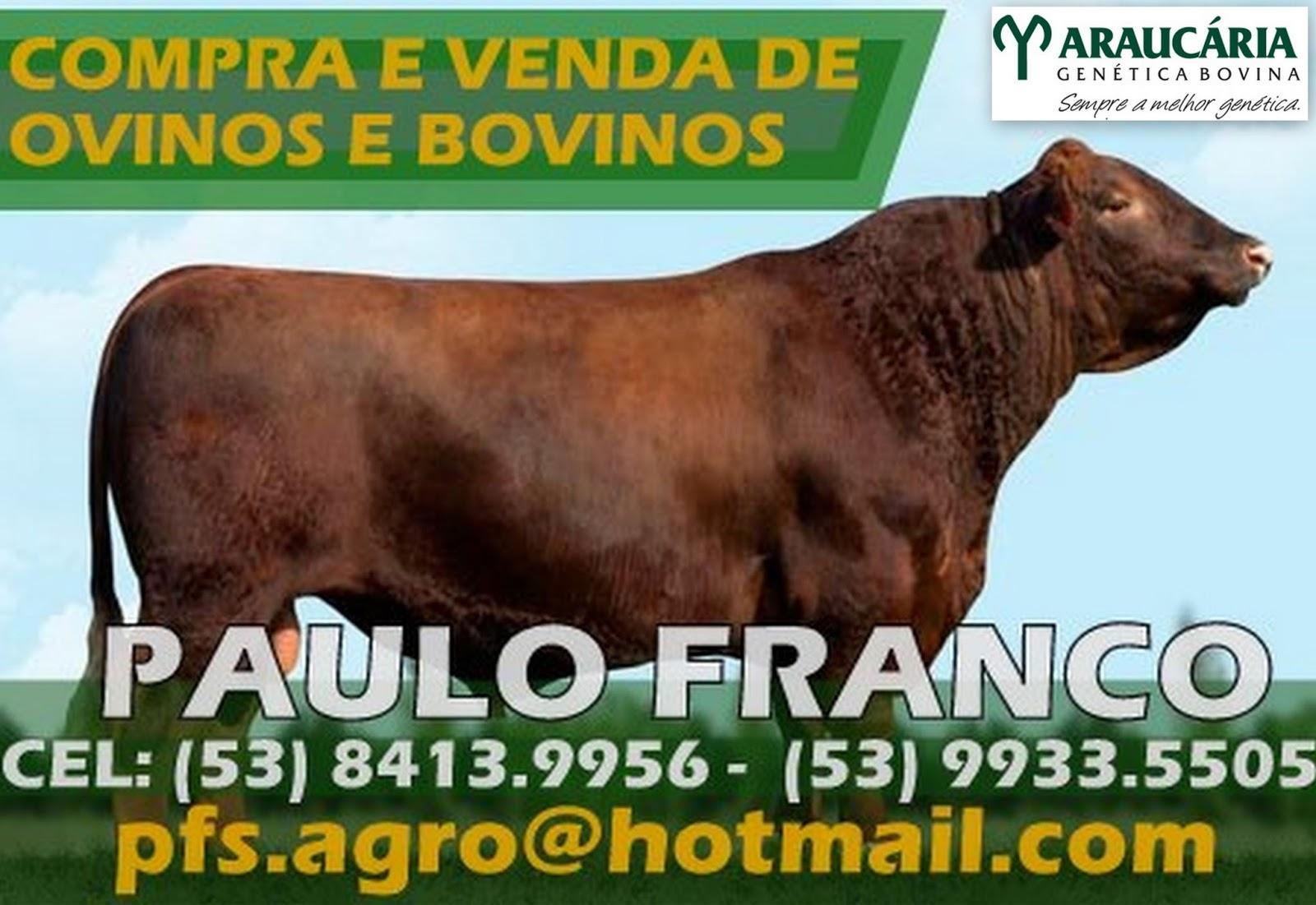 http://eigatimaula.blogspot.com.br/2014/10/publi-cidade-compra-e-venda-de-ovinos-e.html