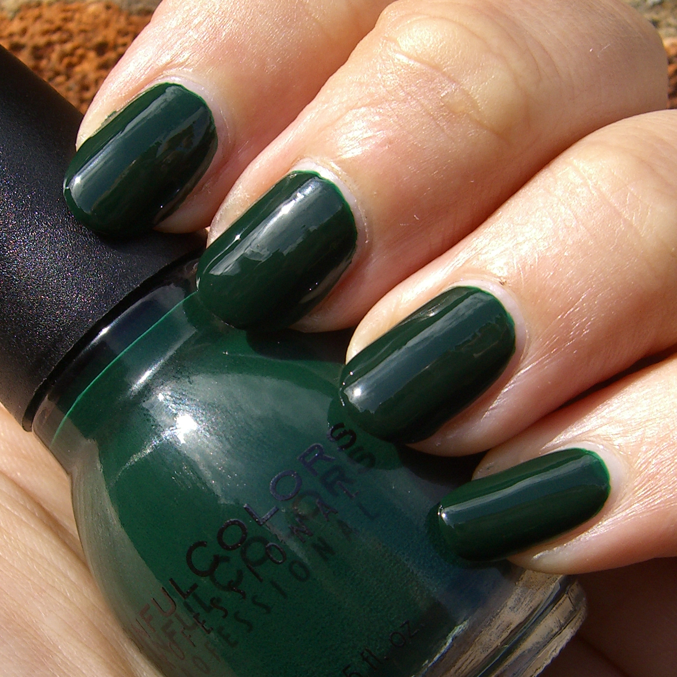 Polish, Plants & More....: Sinful Colors - Last Chance