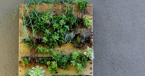Homeschooling todo un desaf o eco ideas vi c mo for Como construir un jardin vertical paso a paso