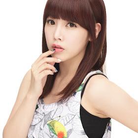 T-ara Soyeon Ikut Cast Drama Iris 2?