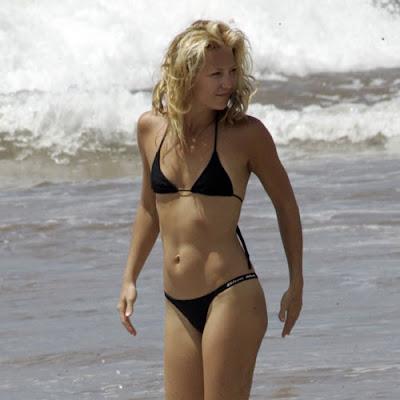 Kate Hudson Hot Sexy Bikini Wallpapers  2