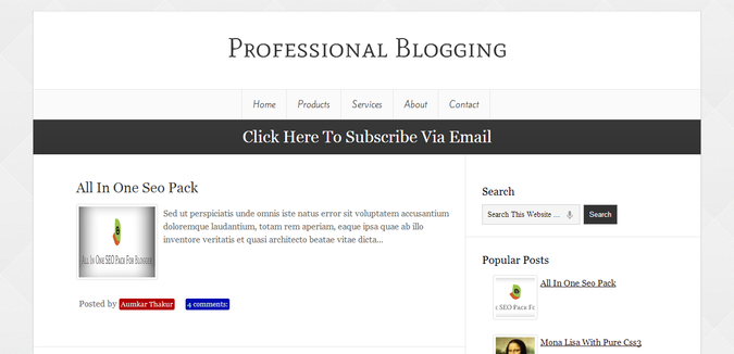 Professional Blogging Template