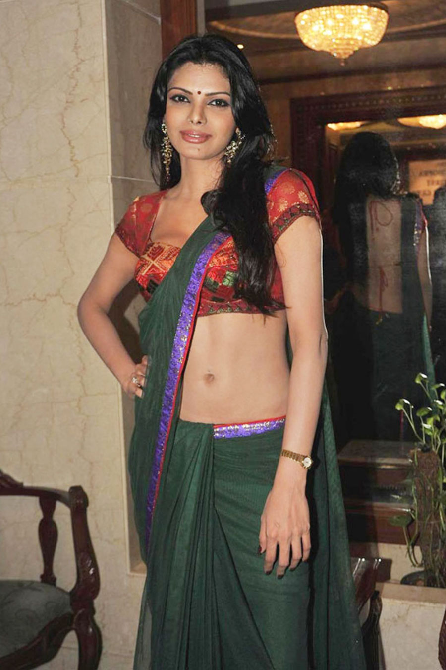 sherlyn chopra in saree