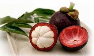 Faedah dan Manfaat Kulit Manggis untuk Obat Tradisional