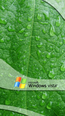 Windows Vista - mokri list slike besplatne pozadine za mobitele download