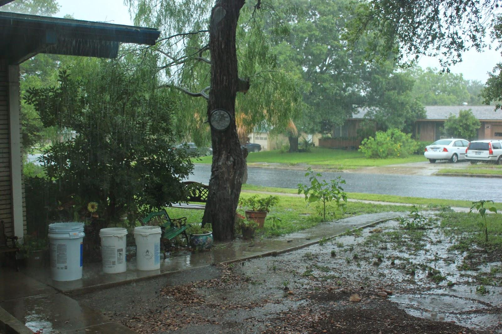 a lot of rain