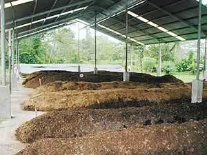 compostaje y biodigestion