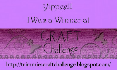 Blog Hop Winner