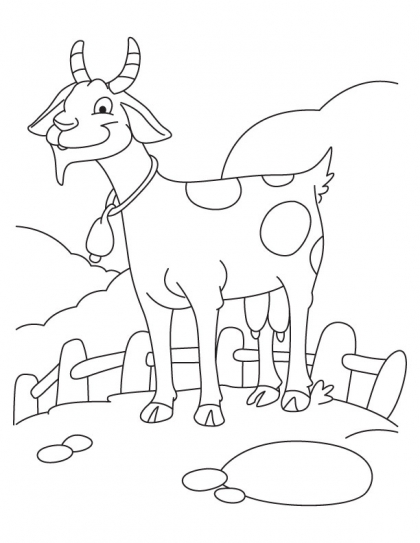 Goat Coloring Pages Kids coloring