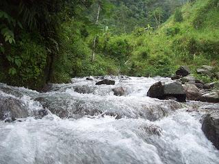 Senandung Dusun