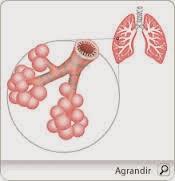 soigner les affections respiratoires, ce remède populaire