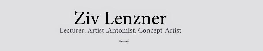Lenzner Anatomy