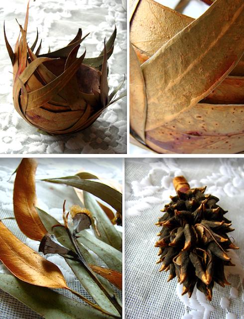 vaso di foglie, eucalipto