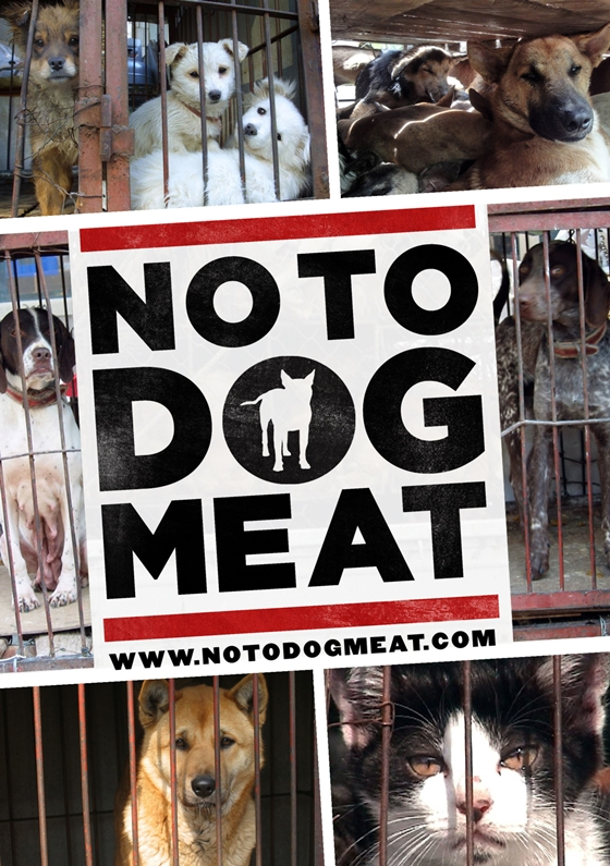 Stop dog and cat meat cruelty