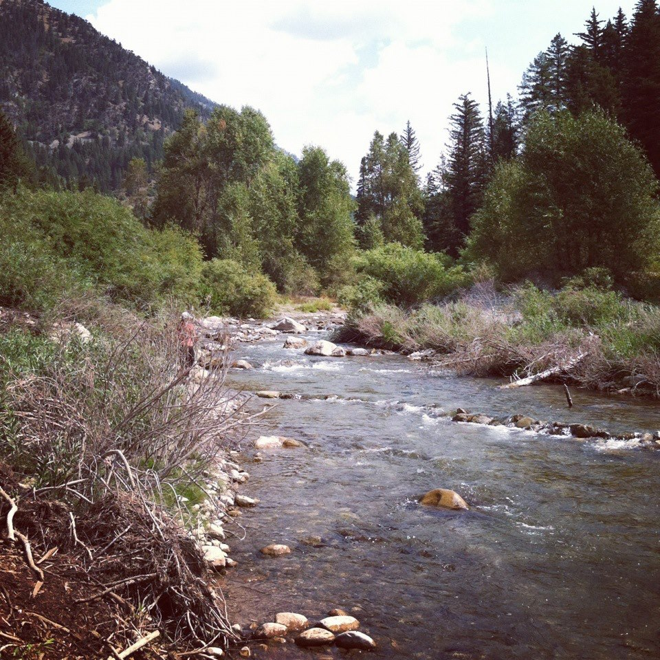 North fork fly fishing small local creeks and streams for Small creek fishing