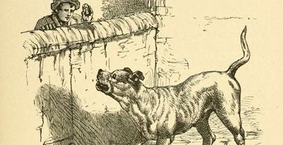 Fábula O Ladrão e o Cão De Guarda